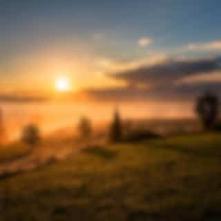 40 Deep Sleep Relaxation Compilation