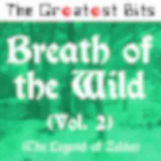 Breath of the Wild, Vol. 2 (The Legend of Zelda)