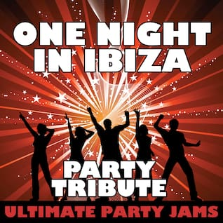 One Night in Ibiza (Party Tribute)
