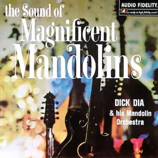 The Sound of Magnificent Mandolins