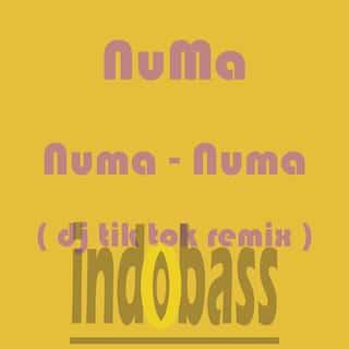 Numa-Numa (DJ Tik Tok Remix)