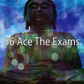 56 Ace The Exams