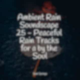 Ambient Rain Soundscape 25 - Peaceful Rain Tracks for a by the Soul