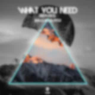 What You Need (Remixes)