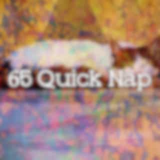 65 Quick Nap