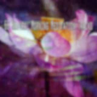 66 Natural Morning Meditation Tracks