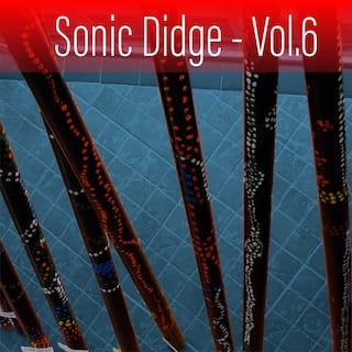 Sonic Didge, Vol. 6