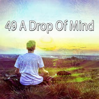 49 A Drop of Mind