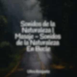 Sonidos de la Naturaleza | Masaje - Sonidos de la Naturaleza En Bucle