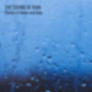The Sound of Rain: Mantra of Noise and Rain