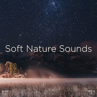 "!!!"" Soft Nature Sounds ""!!!"