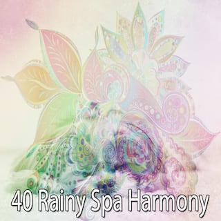 40 Rainy Spa Harmony