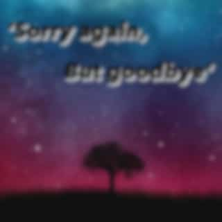 'Sorry again, But goodbye' (Acoustic)