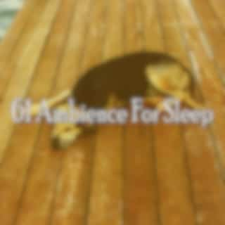 61 Ambience for Sleep