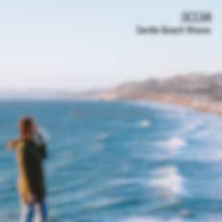 Ocean: Gentle Beach Waves