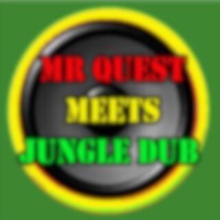 Mr Quest Meets Jungle Dub