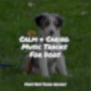 Peaceful Melodies to Relieve Tension & Anxiety For Dogs