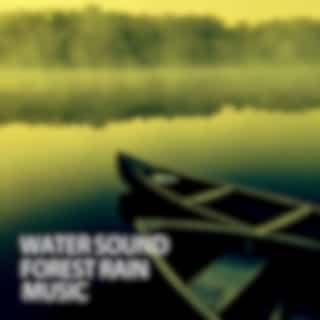 Water Sound: Forest Rain Music