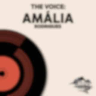 The Voice: Amália Rodrigues