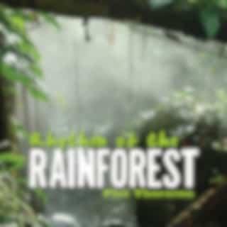 Rhythm of the Rainforest