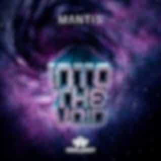 Into The Void (Original Mix)