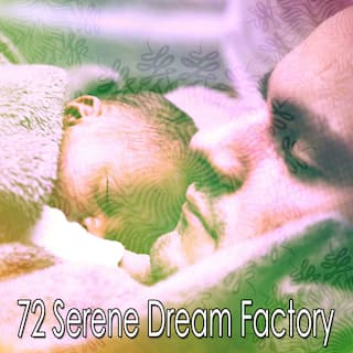 72 Serene Dream Factory