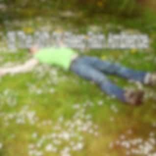 28 The Gift of Sleep Rain Ambience