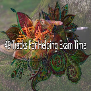 49 Tracks for Helping Exam Time