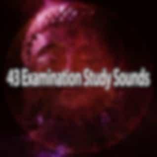 43 Examination Study Sounds