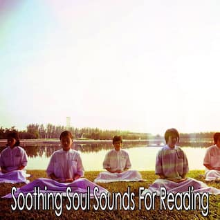 Soothing Soul Sounds For Reading
