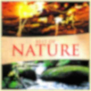 Best of Nature (Nature Sounds from Our Planet)