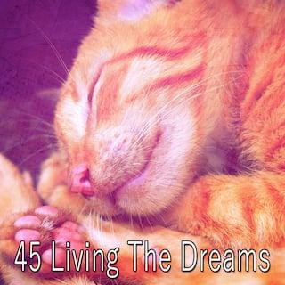 45 Living the Dreams