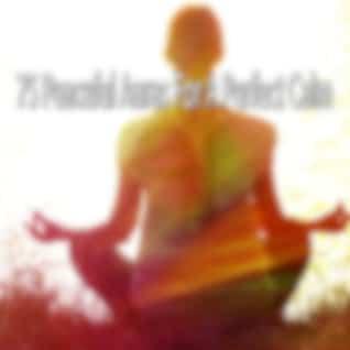 75 Peaceful Auras for a Perfect Calm