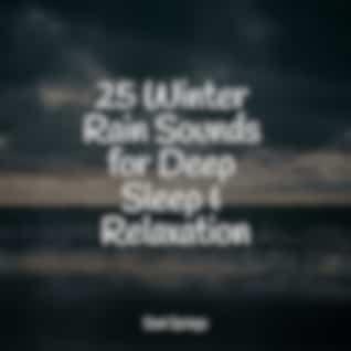 25 Winter Rain Sounds for Deep Sleep & Relaxation