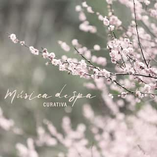 Música de Spa Curativa - Sonidos para Relajación, Bienestar, Masaje Perfecto, Agua Reparadora, Calma, Sueño Profundo, Belleza para el Cuerpo