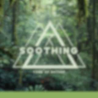 Soothing Tone of Nature (Calming Down, Hear the Nature, Sounds of World)