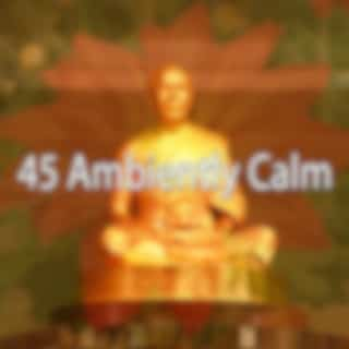 45 Ambiently Calm