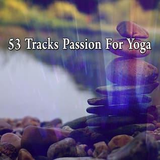 53 Tracks Passion For Yoga