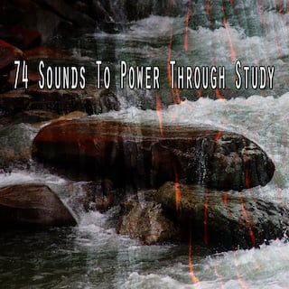 74 Sounds to Power Through Study