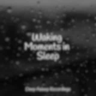 Waking Moments in Sleep
