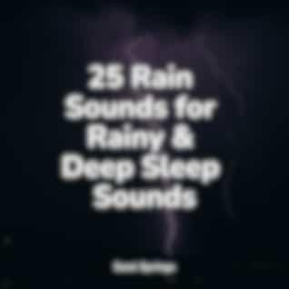 25 Rain Sounds for Rainy & Deep Sleep Sounds