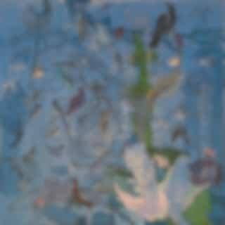 Birdy Island (Remixes)
