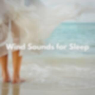 Wind Sounds for Sleep