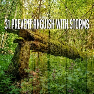 31 Prevent Anguish with Storms
