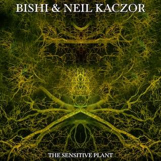 The Sensitive Plant