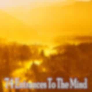 74 Entrances to the Mind
