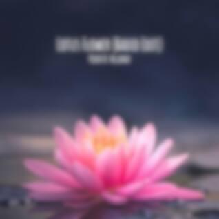 Lotus Flower (Radio Edit)