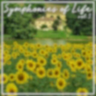 Symphonies Of Life, Vol. 3 - Mozart: The Mozart Album
